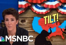GOP Gerrymandering: Democratic Votes Not Matched By Seats Gained | Rachel Maddow | MSNBC