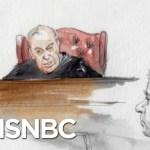 Jill Wine-Banks: Manafort Judge's Behavior And Sentencing Were 'Terrible' | The 11th Hour | MSNBC
