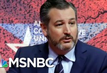 Ted Cruz To Chris Hayes: 'May Space Pirates Devour Your Liver' | All In | MSNBC