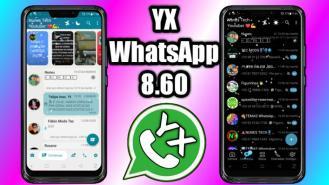 yx whatsapp