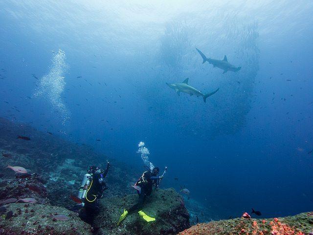 melhores-lugares-para-mergulhar