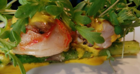 Lobster and Asparagus B