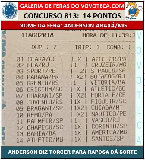 813 14P ANDERSON