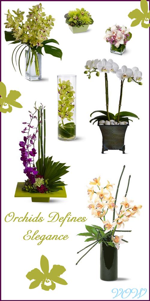 orchid-board