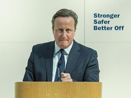 Whether he's wearing his stern face or not, David Cameron cannot - by definition - 'win' the EU referendum [Image: Getty].