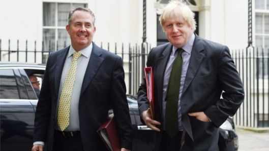 Liam Fox has been critical of Boris Johnson's department, suggesting he should take charge of economic diplomacy [Image: EPA].