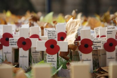 161104-remembrance-poppies