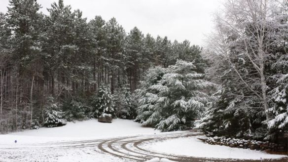 My driveway before the first snow - 11/6