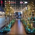 【2018クリスマス】新宿ミナミルミのイルミネーション!新宿新南口の新スポット!