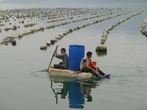 Jeunes sur une barque de polystyrène près des lignes d'élevage de crustacés