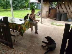 Accueil chez Rose-Marie, notre hôte pour l'île des pins. Les chats et chiens nous ont beaucoup tenus compagnie