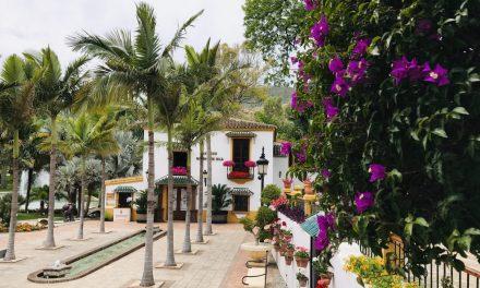 Que faire à Torremolinos : Visite du jardin botanique Molino De Inca