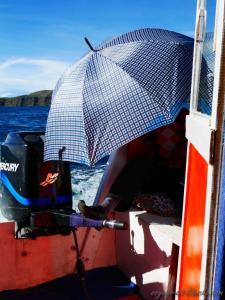l´art bolivien de la navigation . tout est dans le pantalon de costume, les chaussures de ville et le parapluie !