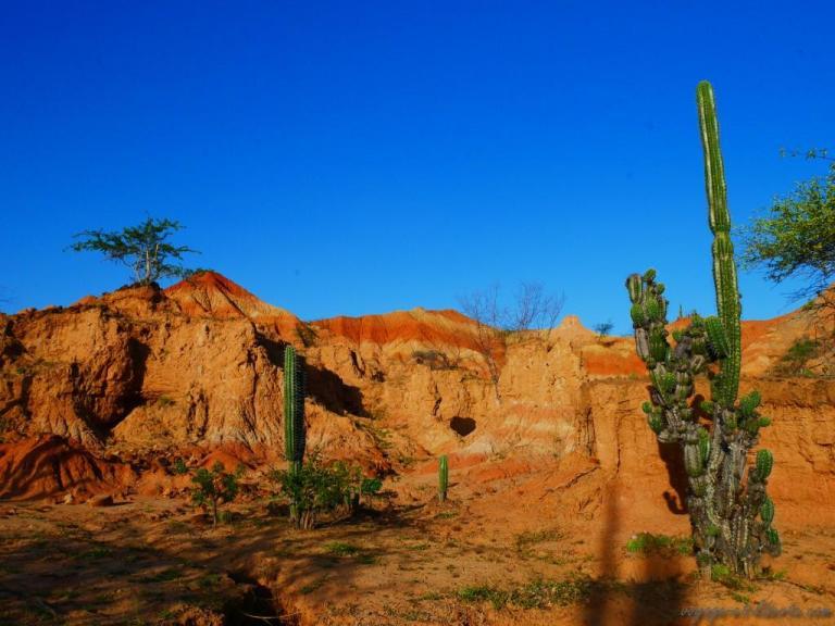 colombie désert de tatacoa