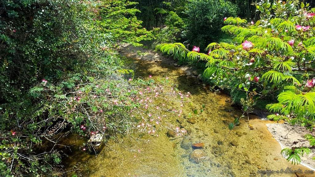 Colombie, Antioquia, San Rafael