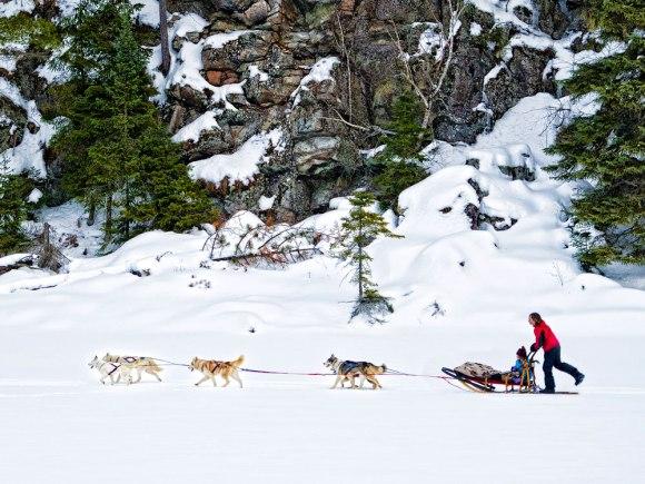 Dogsledding2