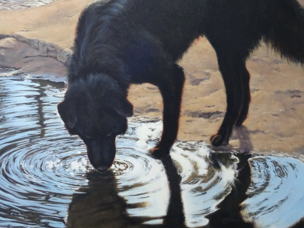Portrait of Brownie at ArtBank Collective, de l'artiste Don Kilby