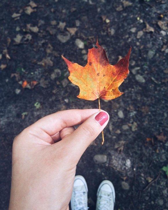 Femme tenant une feuille colorée d'automne au parc urbain national Rouge