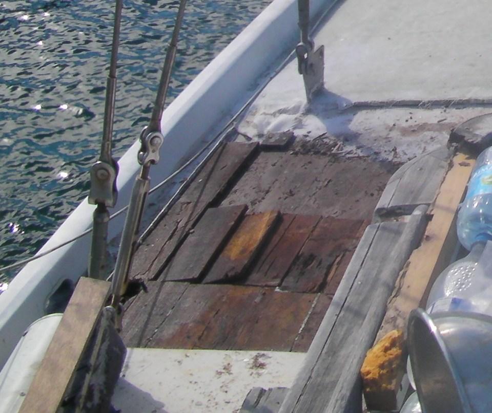 Bois plein de termite sur bâbord