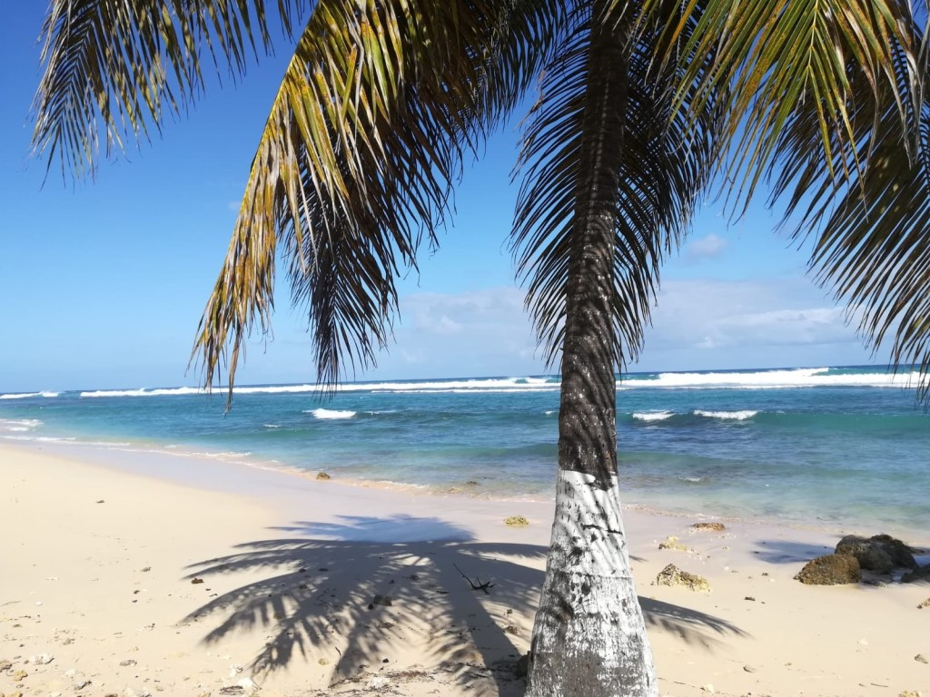 plage-guadeloupe