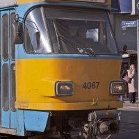transportation, trolley, tram