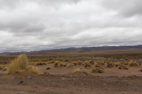 201411 - Bolivie - 0519