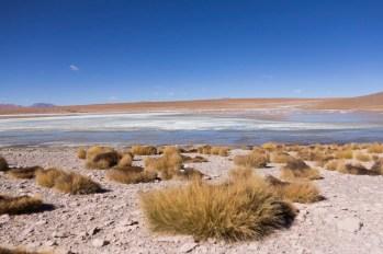 201411 - Bolivie - 0585