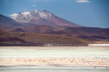 201411 - Bolivie - 0648