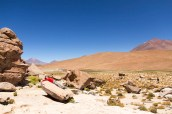 201411 - Bolivie - 0768
