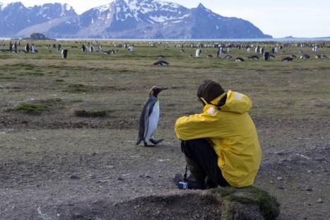 201412 - Antarctique - 0418