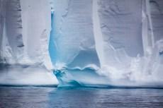 201412 - Antarctique - 0665