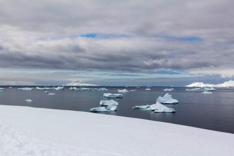 201412 - Antarctique - 0815
