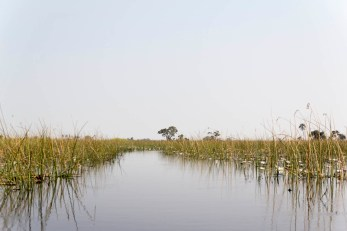 201504 - Botswana - 0049