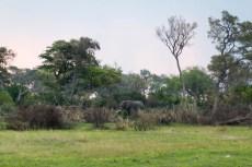 201504 - Botswana - 0058