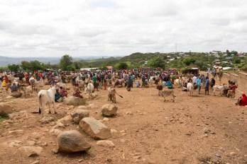 201506 - Ethiopie - 0570