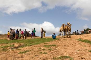 201506 - Ethiopie - 0573