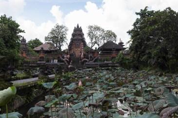 201602 - Indonésie - 0767
