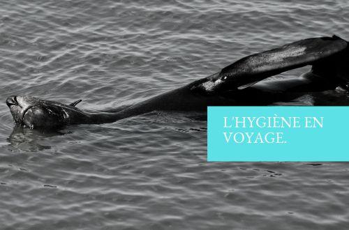 l'hygiène en voyage