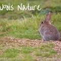 Auxois Nature
