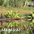 Reve de Madagascar
