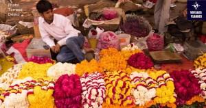 Sprzedawaca kwiatow