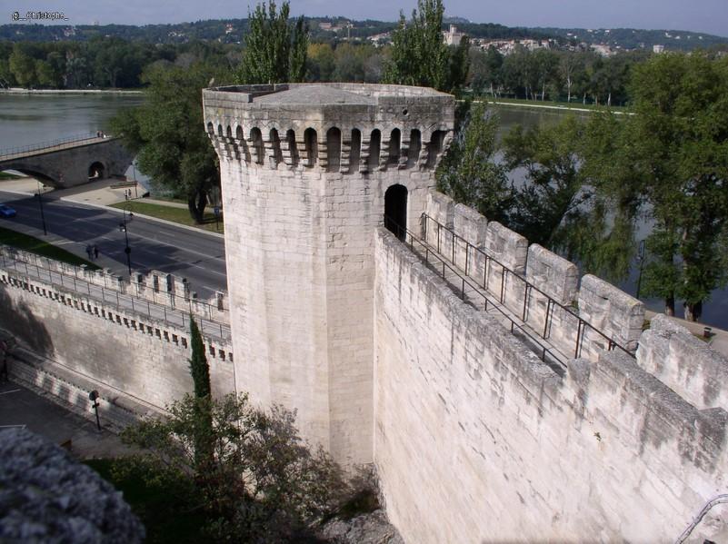 Avignon - cité des Papes