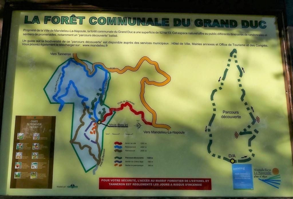 Forêt du Grand Duc - Mandelieu