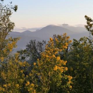 Le Pic de l'Ours vu depuis le massif de Tanneron