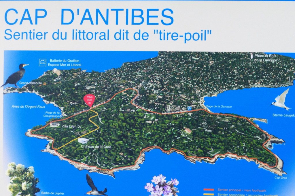 Cap d'Antibes - sentier « Tire-Poil »