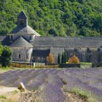 Abbaye de Sénanque, une halte spirituelle au milieu des lavandes