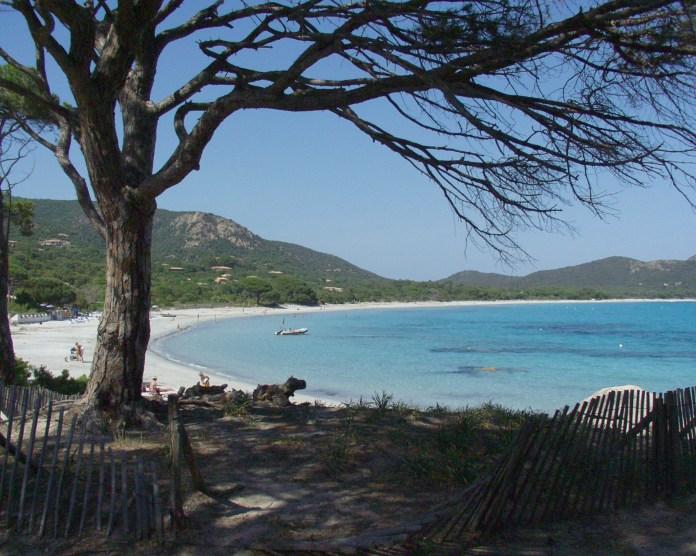 plage palombaggia corse tourisme voyage