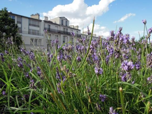 Promenade plantée entre Bastille et Vincennes : Balade dans les airs de Paris 7