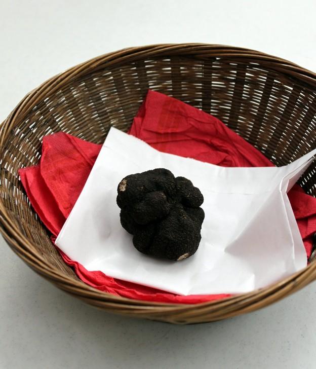 La truffe noire du Périgord : tout savoir (ou presque) sur l'or noir de la gastronomie 1
