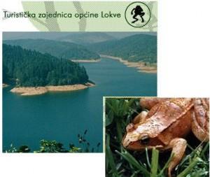 Lokve lac et grenouilles